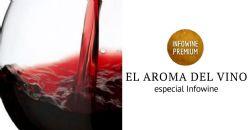 Especial Infowine: El Aroma del Vino