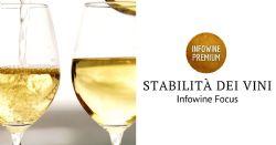 La stabilità dei vini
