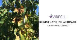 """Quali sono gli strumenti per una viticoltura resiliente ai cambiamenti climatici?""""- presentazione del progetto VIRECLI e ottimizzazione dell'acqua"""