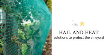 Solutions against hail and excessive heat in vineyards