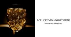 Bollicine e mannoproteine