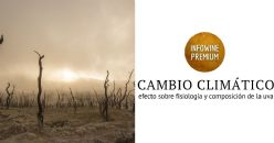 Efects of climate change conditions (elevated CO2 , temperature and water scarcity) on phenology, physiology and grape quality of four Tempranillo somatic variants