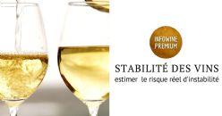 Techniques analytiques combinées pour l'étude de la stabilité des vins blancs