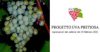L'economia circolare come strumento per migliorare l'efficienza e il marketing delle aziende vitivinicole