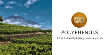 Phenolic composition analysis for authenticating red wine from the Canary Islands