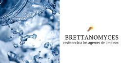 Biofilms de Brettanomyces y su resistencia a los agentes de limpieza