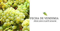 Efecto de la fecha de vendimia para Viognier y Garnacha blanca