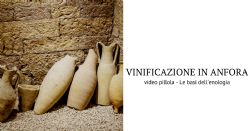 Video Pillola - Affinamento in Anfora, quali sono i vantaggi della Terracotta
