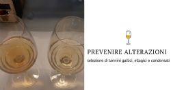HIDEKI - Una splendida opportunità per proteggere il vino in modo naturale