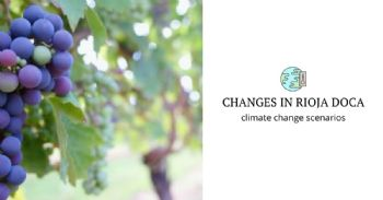 Projected changes in the Rioja DOCa vines under climate change scenarios