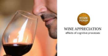 Key drivers of wine appreciation and consumption: a cognitive perspective