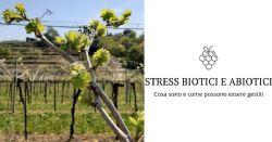 STRESS BIOTICI E ABIOTICI
