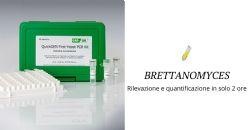 Brettanomyces: il controllo analitico nella filiera vitivinicola