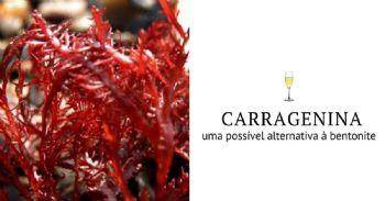 Carragenina, uma possível alternativa à bentonite