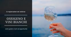 Webinar Gratuito - Ossigeno e vini bianchi: gestire i rischi e le opportunità