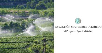 Proyecto para monitorizar el estado hídrico del viñedo