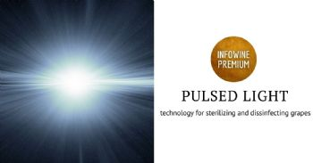 Sterilizing with Pulsed Light