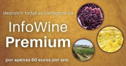 Assinatura anual da Infowine