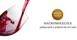 Stabilità, reattività e interazioni dei tannini nei vini rossi italiani: polisaccaridi e proteine