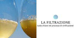 Soluzioni per la filtrazione vino