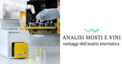 Metodi analitici nel settore enologico: