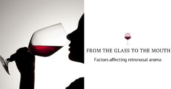 From the glass to the mouth: wine-related and human-physiological factors affecting retronasal aroma during wine consumption
