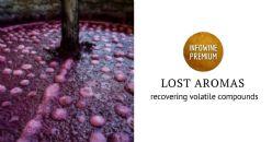 Tecnología para recuperar y modular el aroma perdido durante la fermentación alcohólica