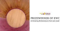 Cold plasma at atmospheric pressure for eliminating <i>Brettanomyces</i> from oak wood
