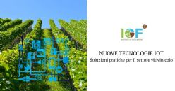 IoT technologies to monitor vine and grape health and vigour