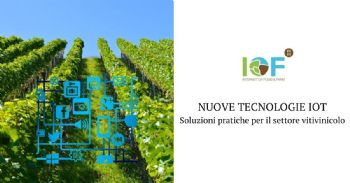 IoT technologies to monitor vine and grape health and vigour