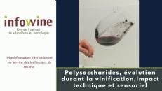 Courte Video - Les polysaccharides du vin et leur impact technique et sensoriel