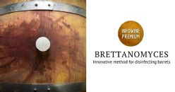 Use of cold plasma at atmospheric pressure to remove Brettanomyces from oak barrels