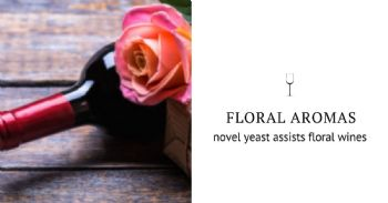 "Stop and smell the roses: novel yeast that impart ""floral"" aromas in wine"