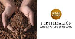 Respuesta de la vid a la fertilización con dosis variable de nitrógeno