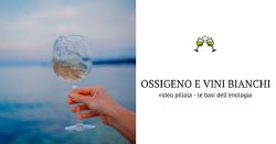 Le ossigenazioni inconsapevoli - ed il ruolo dei polifenoli - nella produzione di un vino bianco
