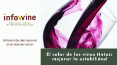 Minivídeo: Cómo mejorar la estabilidad del color de los vinos tintos