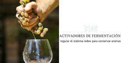 Nuevo activador de fermentación integral y 100% orgánico