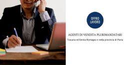 Offerta di lavoro: agenti di vendita plurimandatari