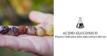 Trasparenza e affidabilità per una giusta remunerazione qualitativa delle uve