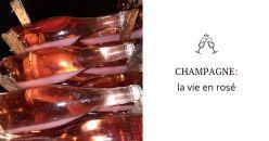 Corso in aula: Champagne, la vie en rosé