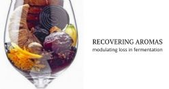 Technology to recover and modulate the aroma lost during alcoholic fermentation