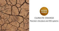 Viticultura de precisión: gestionar la variabilidad en campo, reducir el uso de fitosanitarios y hacer frente al cambio climático