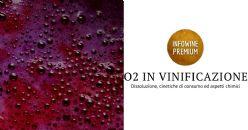 L'ossigeno nel vino: dissoluzione, cinetiche di consumo ed effetto sulla composizione chimica