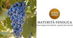 Maturità fenolica delle uve: nuove opportunità analitiche