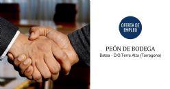 OFERTA DE EMPLEO: peón de Bodega- Batea -D.O.Terra Alta (Tarragona)
