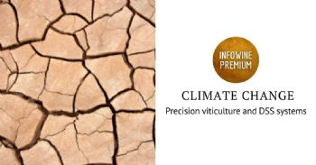Precision viticulture and DSS systems to tackle climate change