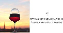 Prevenire le precipitazioni di quercetina nei vini rossi: la rivoluzione nel collaggio
