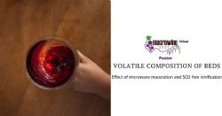 Effect of microwave maceration and SO2 free vinification on volatile composition of red wines