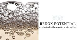 The importance of measuring redox potential in wines