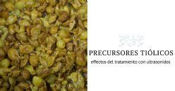 Effectos del tratamiento con ultrasonidos en los precursores tiólicos de las uvas